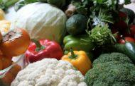 Terra dei fuochi: a rischio 135 aziende agricole e 65 mila lavoratori
