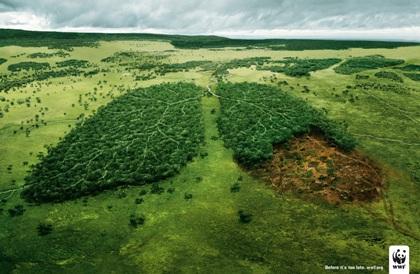 Edilizia:  il consumo di suolo è dovuto in gran parte alla cementificazione continua per la realizzazione di nuove infrastrutture