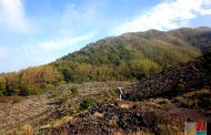 Visita guidata: Vesuvio, passeggiando sul fiume di lava
